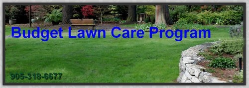 Budget Lawn Care Program from Turf King